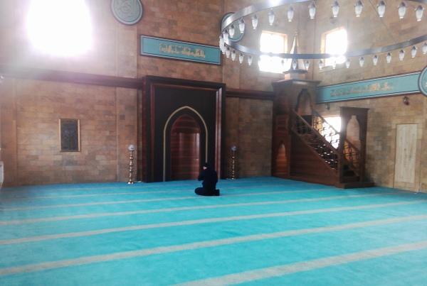 Муфтияту Крыма предложили джами на «поляне протеста»