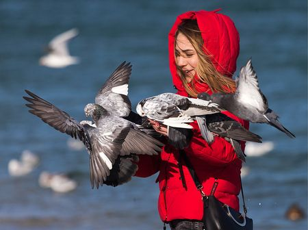 Зачем ехать в Крым зимой