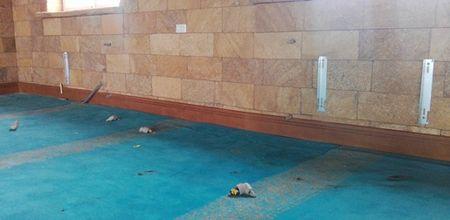 В Крыму вандалы осквернили мечеть