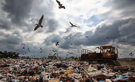 Почему Россия тонет в мусоре