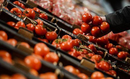 На турецкие помидоры запрета больше нет