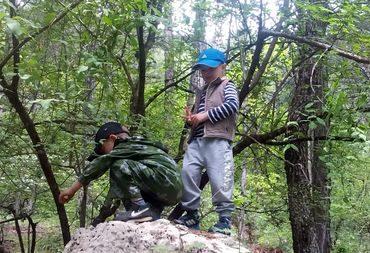 Друзья пытливо исследуют ботаническое разнообразие майского леса.