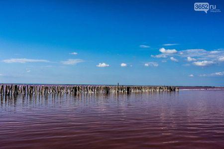 В Крыму есть розовое озеро