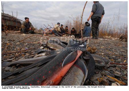 Коренных жителей Камчатки превращают в изгоев