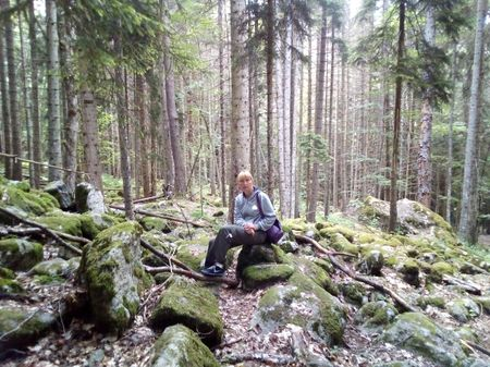 В пихтовом лесу по пути к водопаду Шумка, расположенному южнее города Теберда