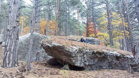 Камень похож на большую касатку.