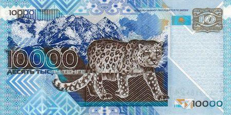 В Казахстане снежным барсам дадут имена и ID-паспорта