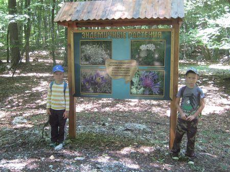 Юные путешественники у информационного стенда