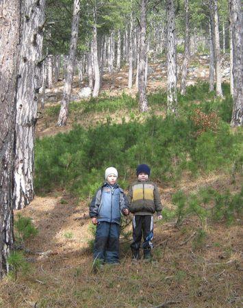 Асан-акай и Вова-акай в молодом сосновом лесу