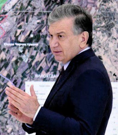 Шавкат засадит Узбекистан деревьями